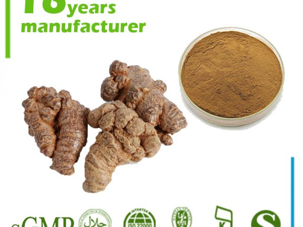 Panax Notoginseng Root Extract 4:1 TLC