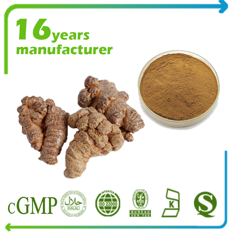 Panax Notoginseng Root Extract Notoginsenosides 20% HPLC