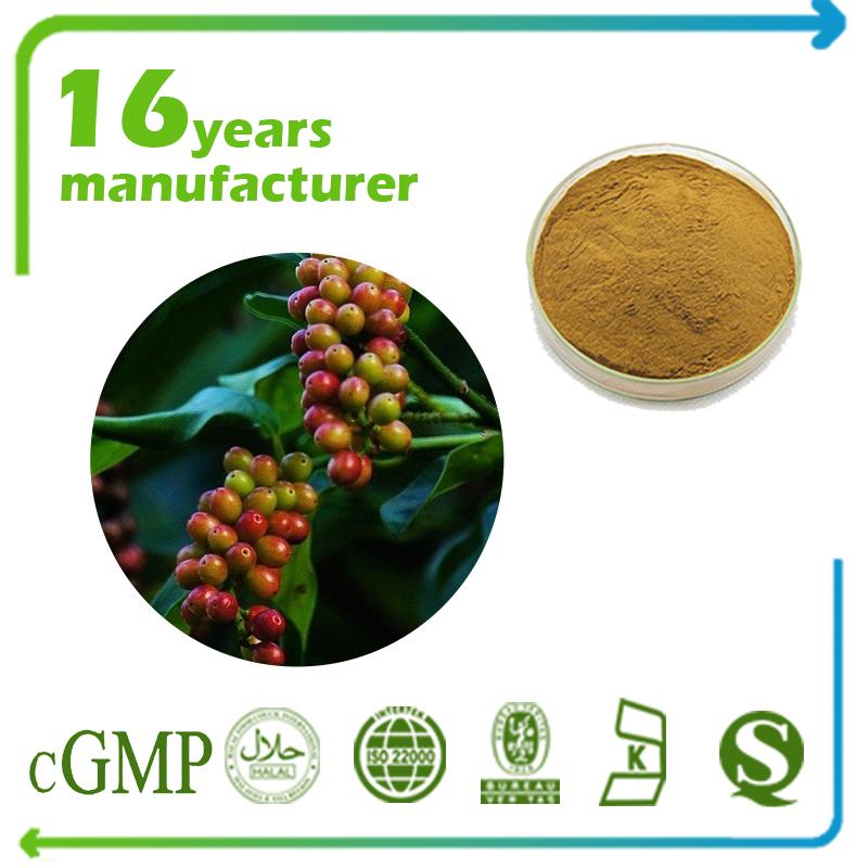 Schisandra Fruit Extract Schizandrins 5% UV
