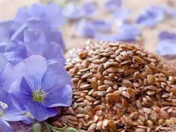 Flaxseed Extract Lignans 40% HPLC