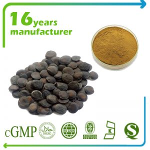 Griffonia Seed Extract 5-HTP 99% HPLC