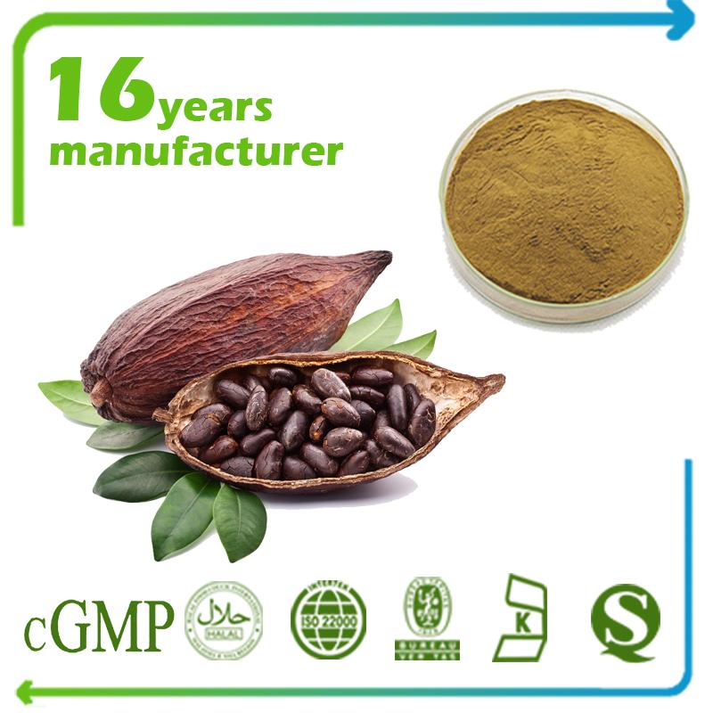 Cocoa Extract Theobromine 35% HPLC