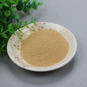 Yeast Beta Glucan (Beta-1,3/1,6- glucan) 70% HPLC