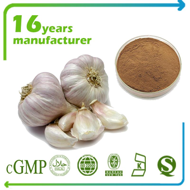 Garlic Extract Allicin 1% HPLC