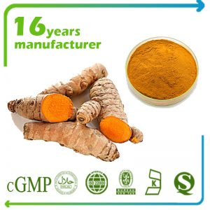 Turmeric Extract Curcuminoids 95% HPLC (Natural, Carbon 14 passed)