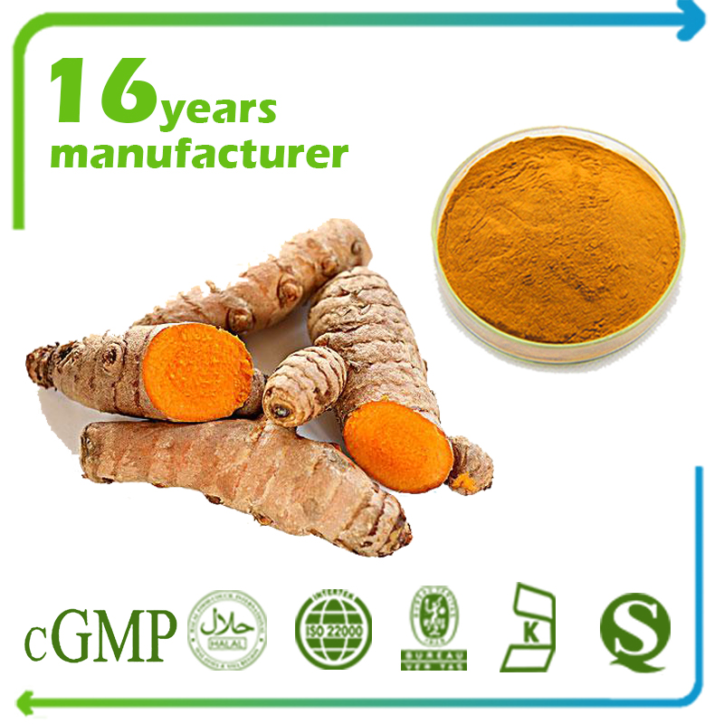 Turmeric Root Powder 80 Mesh TLC