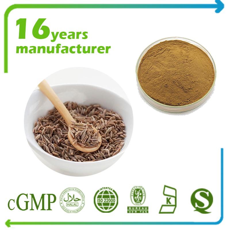 Cumin Seed Extract 4:1 TLC