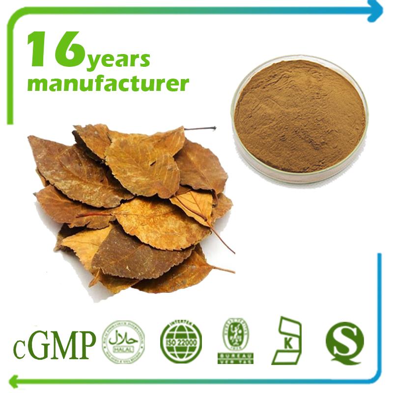 Hawthorn Leaf Extract Flavone 2% UV