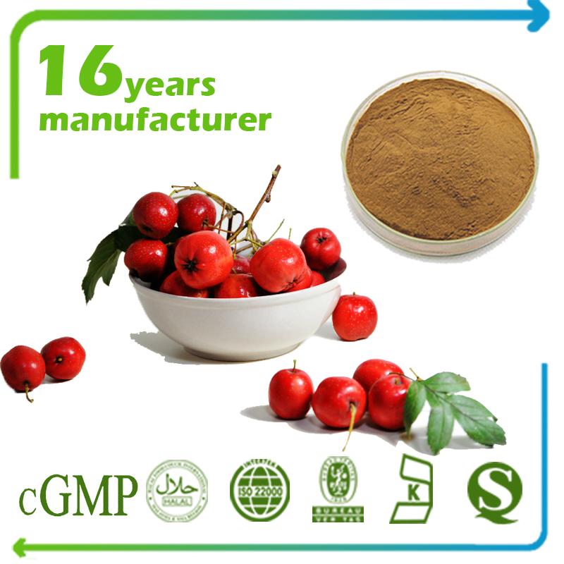 Hawthorn Berry Extract Flavones 5% UV