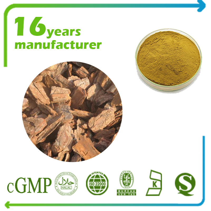 Pine Phytosterol Extract Total Sterol 98% GC