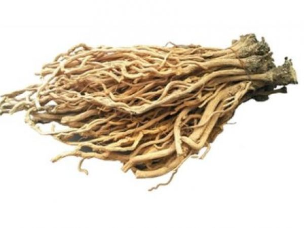 Isatis Root Extract 10:1 TLC