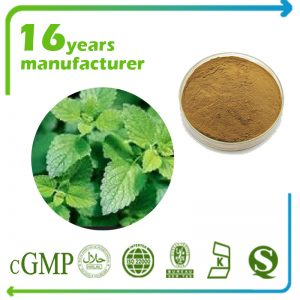 Lemon Balm Grass Powder (Lemon Balm Leaf Powder)