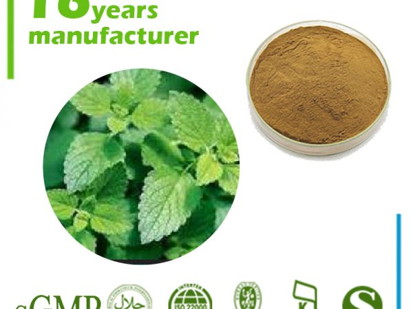 Lemon Balm Grass Powder (Lemon Balm Leaf Powder)