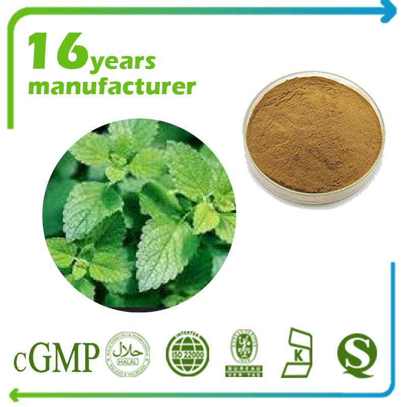 Lemon Balm Extract 4:1 TLC