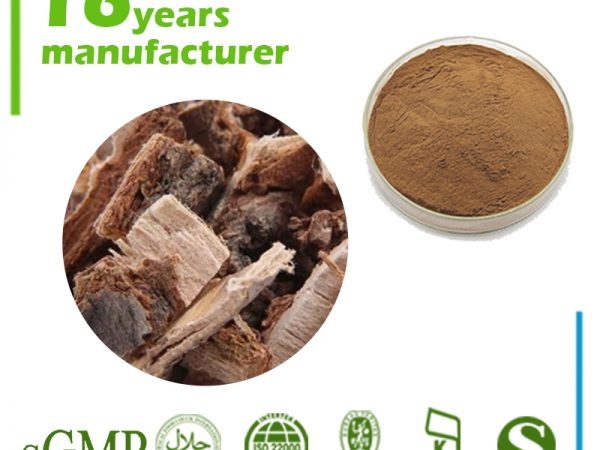 Slippery Elm Bark Extract 4:1 TLC