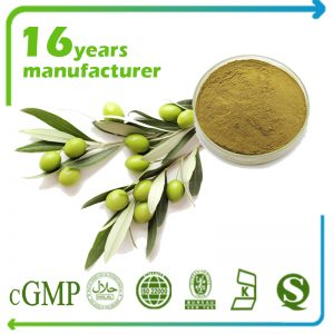 Olive Leaf Extract Oleuropein 50% HPLC