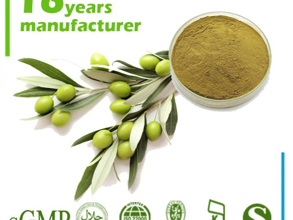 Olive Leaf Extract Oleuropein 40% HPLC