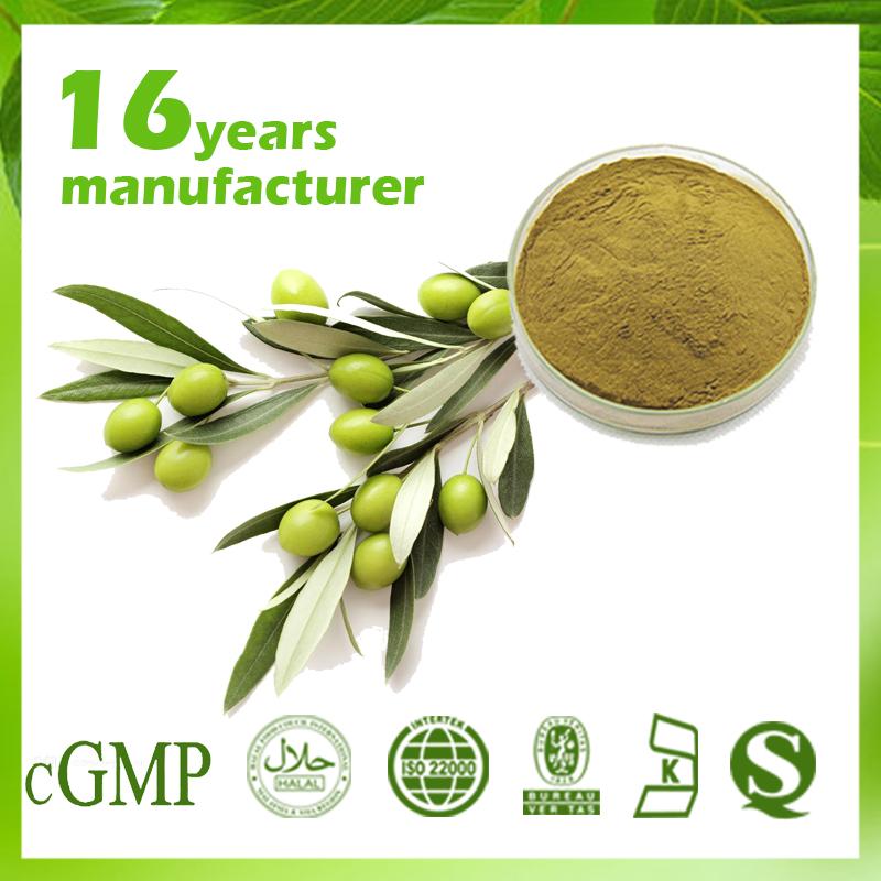 Olive extract 20% Hydroxytyrosol HPLC