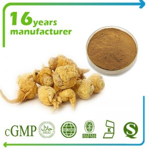 Maca Extract 15:1 TLC