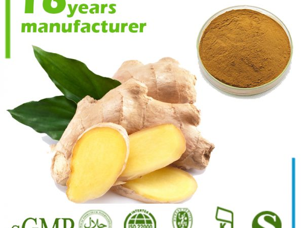 Ginger Extract 4:1 TLC