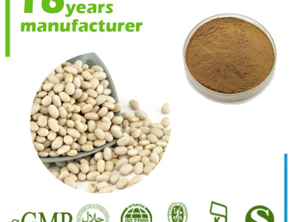 White Kidney Bean Extract 10:1 TLC