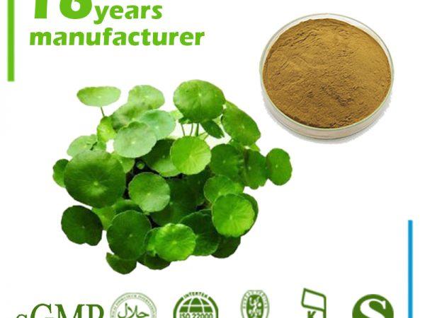 Gotu Kola Extract Asiaticosides 20% HPLC (Centella Asiatica Extract)