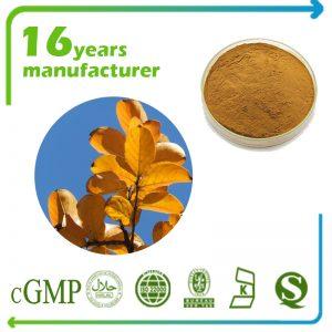 Banaba Leaf Extract Corosolic Acid 2% HPLC