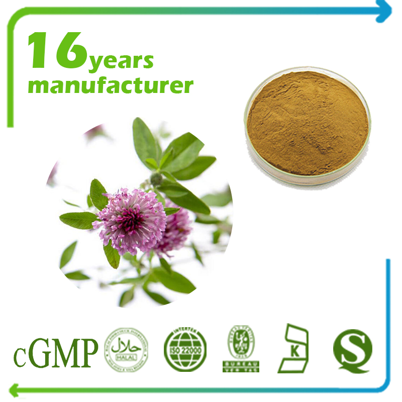 Red Clover Leaf Powder