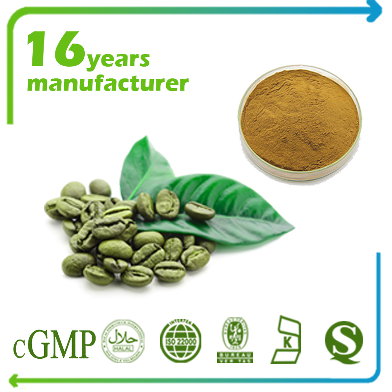 Green Coffee Bean Extract Chlorogenic Acids 5% HPLC (4:1)