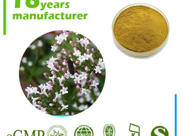 Valerian Root Extract 4:1 TLC