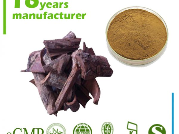 Pygeum Africanum Extract Sterol 13% GC