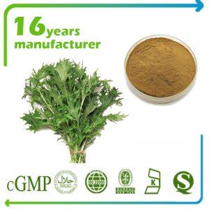 Wormwood Extract 10:1 TLC (Folium Artemisiae Extract)