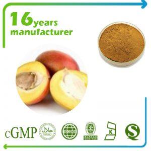 African Mango Seeds Extract 4:1 TLC