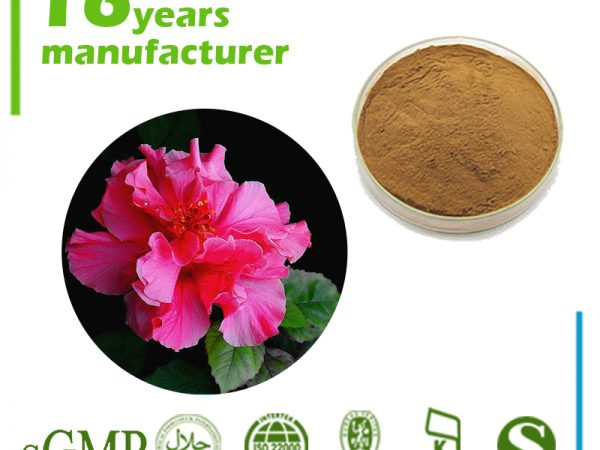 Hibiscus Extract 10:1 TLC