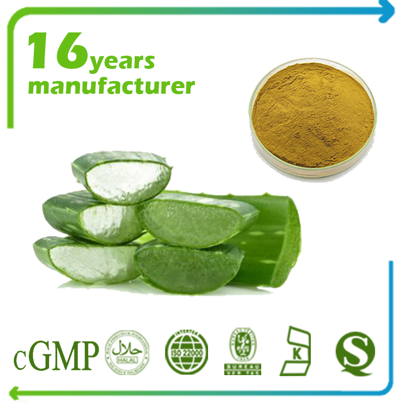 Aloe Vera Gel Freeze Dried Powder 50:1 TLC