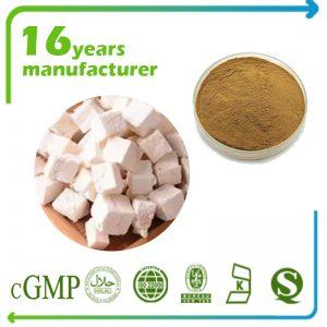 Poria Cocos Extract Polysaccharides 30% UV (Poria Mushroom Extract, Off white)
