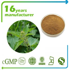 Stinging Nettle Root Extract 10:1 TLC (Canada)