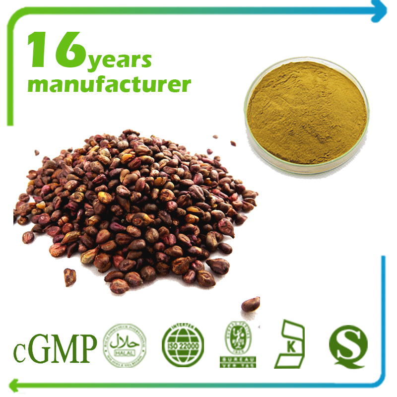 Grape Seed Extract 5:1 TLC