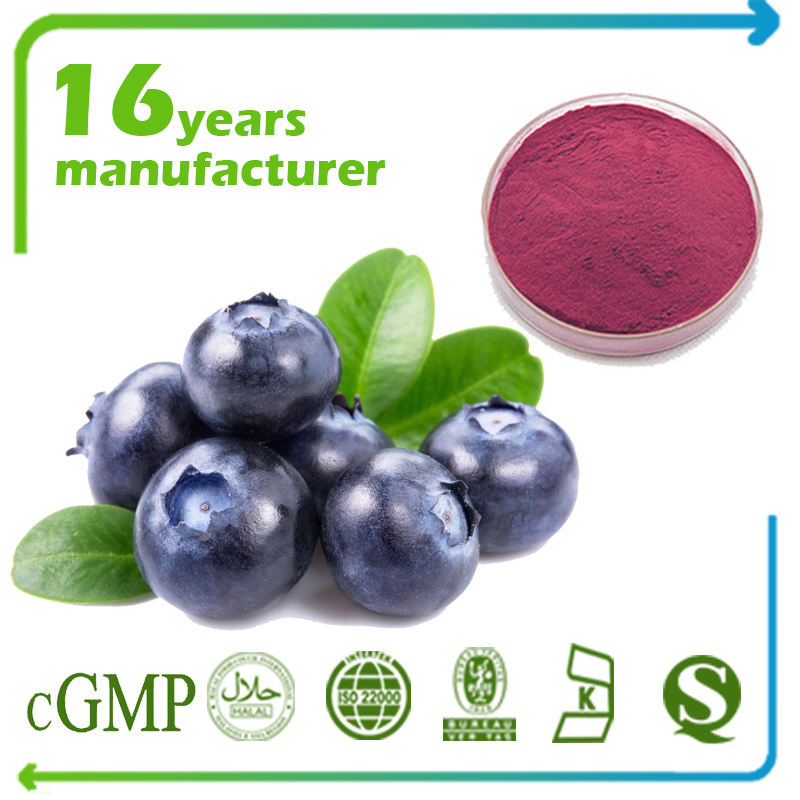 Blueberry Extract Anthocyanidins 25% UV