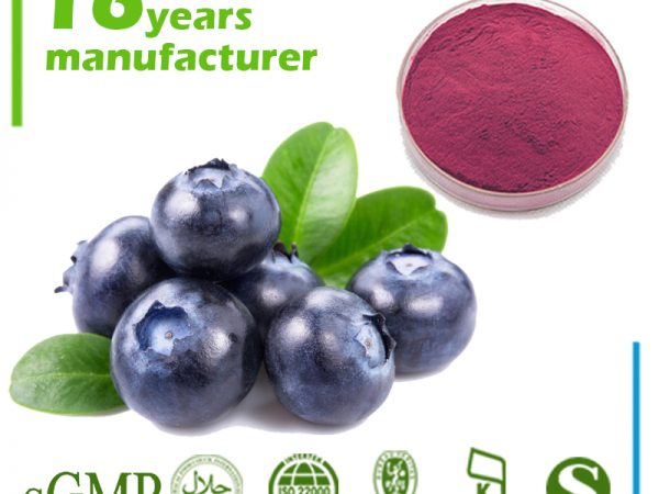 Blueberry Extract 10:1 TLC