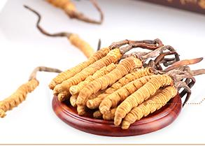 Cordyceps Extract Powder Cordyceps Acid 7%
