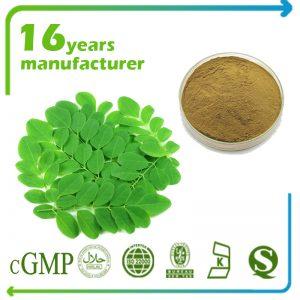 Moringa Leaf Extract 4:1 TLC
