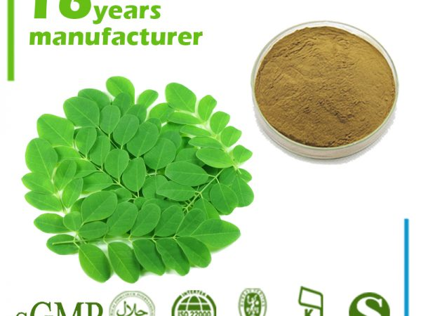 Moringa Leaf Extract 10:1 TLC