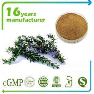 Rosemary Extract Rosmarinic Acid 7.5% HPLC
