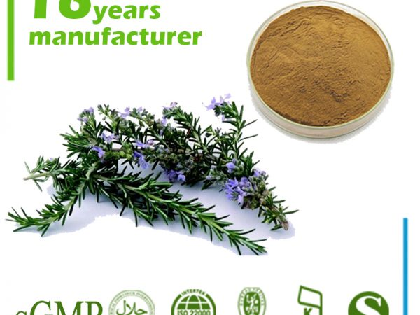 Rosemary Leaf Extract 25% Ursolic Acid HPLC