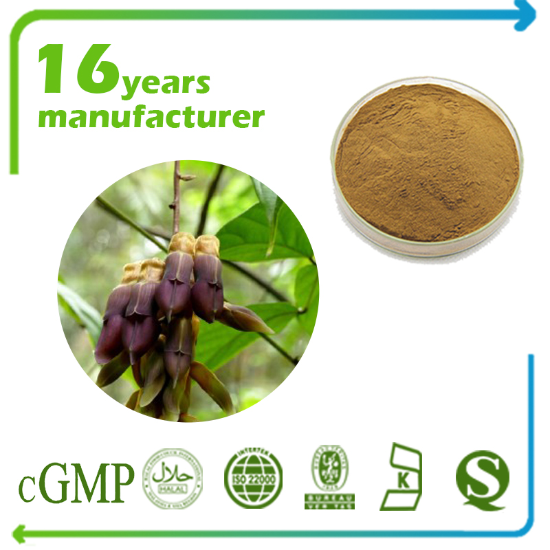 Mucuna Pruriens Extract L-Dopa 50% HPLC (100% Natural)