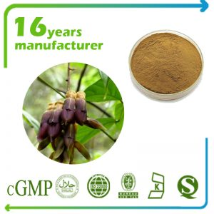 Mucuna Pruriens Extract L-Dopa 25% HPLC (White to off white)