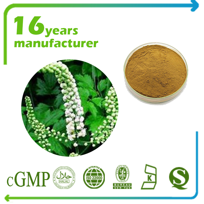 Black Cohosh Extract Total Triterpene Sapoins 2.5% HPLC