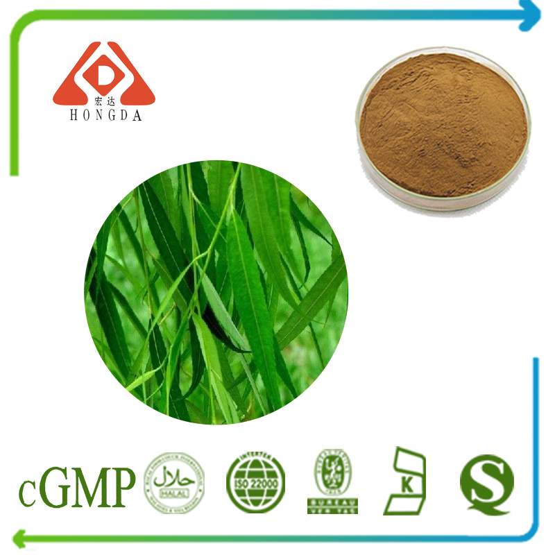 White Willow Bark Extract Salicin 25% HPLC
