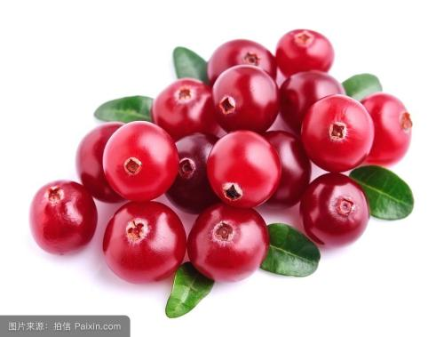 Lingonberry Extract 4:1 TLC